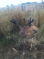 Drop tine buck-4-yr-old-1.jpg